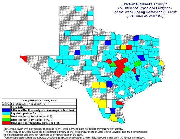 12-13 Flu in Texas